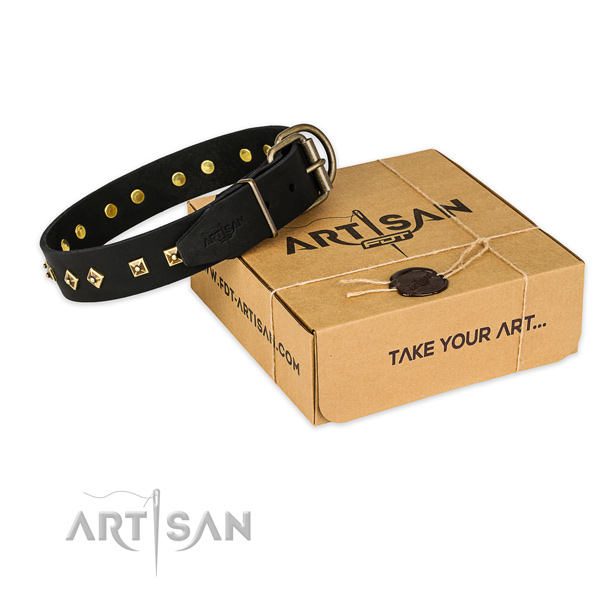 Durable fittings on full grain leather collar for your lovely pet