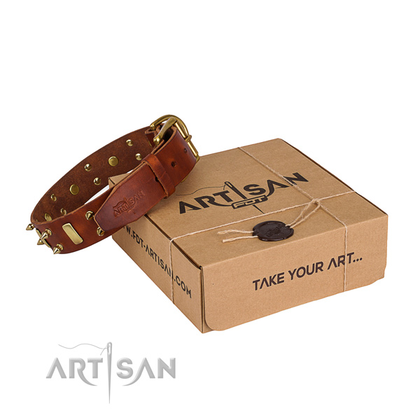 Easy wearing dog collar of best quality genuine leather with adornments