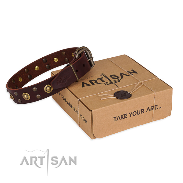 Reliable fittings on full grain genuine leather collar for your stylish pet