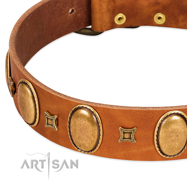 Leather dog collar with rust resistant fittings for comfortable wearing