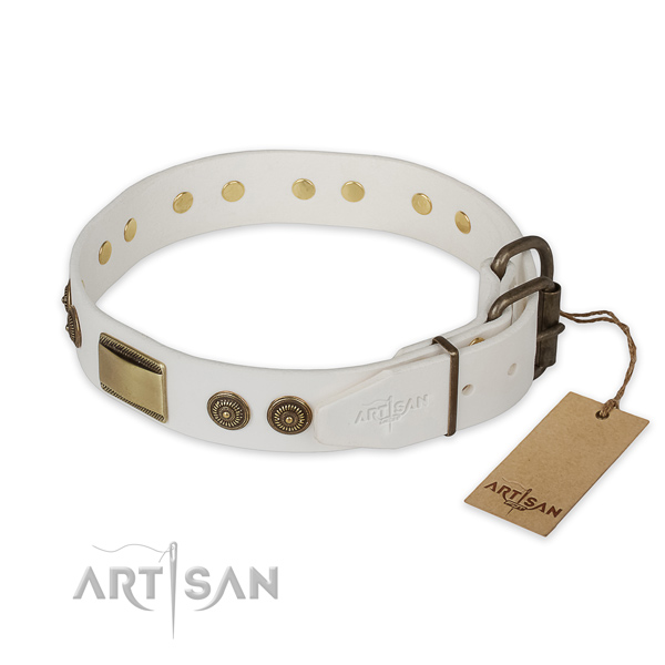 Corrosion resistant fittings on full grain genuine leather collar for basic training your doggie