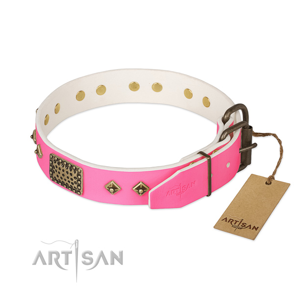 Strong decorations on handy use dog collar