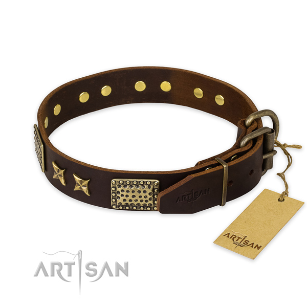 Corrosion proof traditional buckle on full grain leather collar for your stylish pet