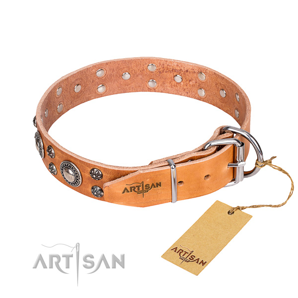 Daily walking adorned dog collar of top notch full grain natural leather
