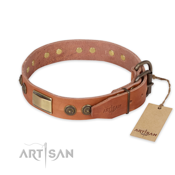 Rust-proof buckle on leather collar for daily walking your canine