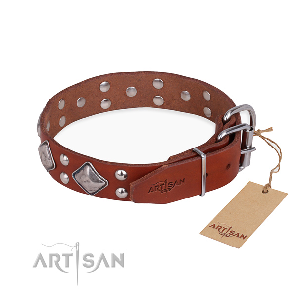 Full grain natural leather dog collar with significant corrosion proof adornments