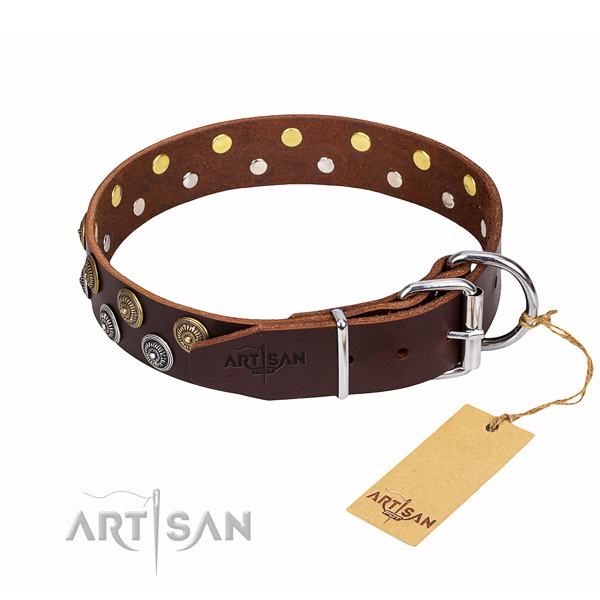 Fancy walking decorated dog collar of best quality full grain leather