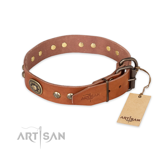 Rust resistant traditional buckle on genuine leather collar for fancy walking your doggie