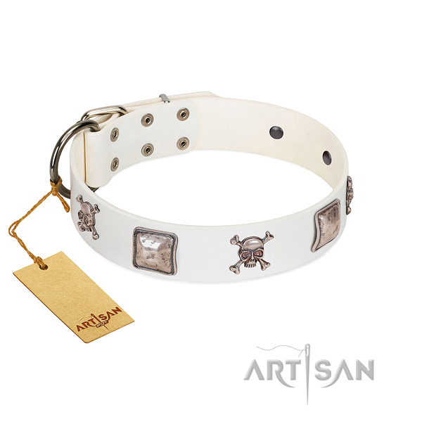 Studded genuine leather collar for your attractive canine