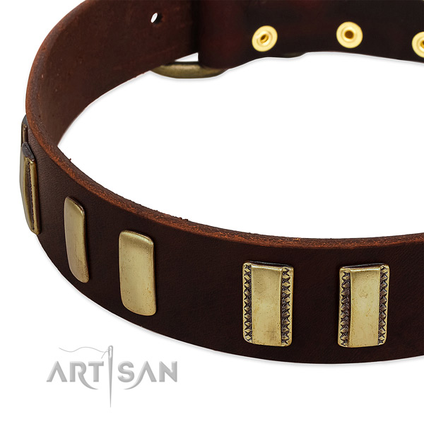Full grain genuine leather dog collar with rust resistant fittings for easy wearing