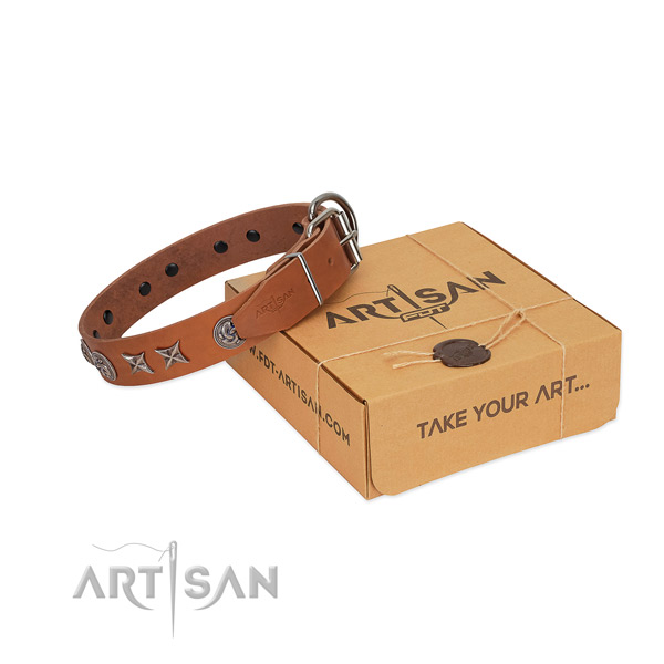 Stylish design dog collar of full grain genuine leather with embellishments