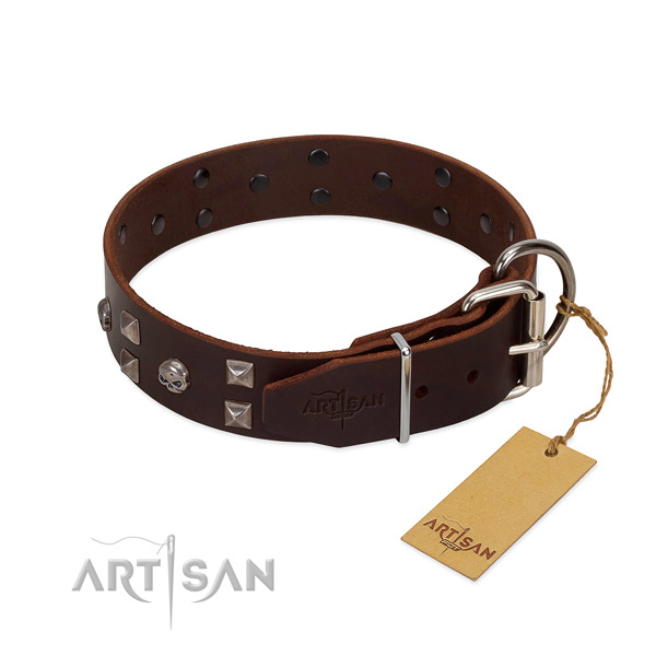 Studded full grain leather dog collar with durable hardware