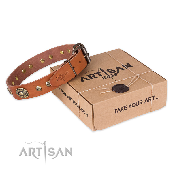 Rust resistant D-ring on leather dog collar for daily walking