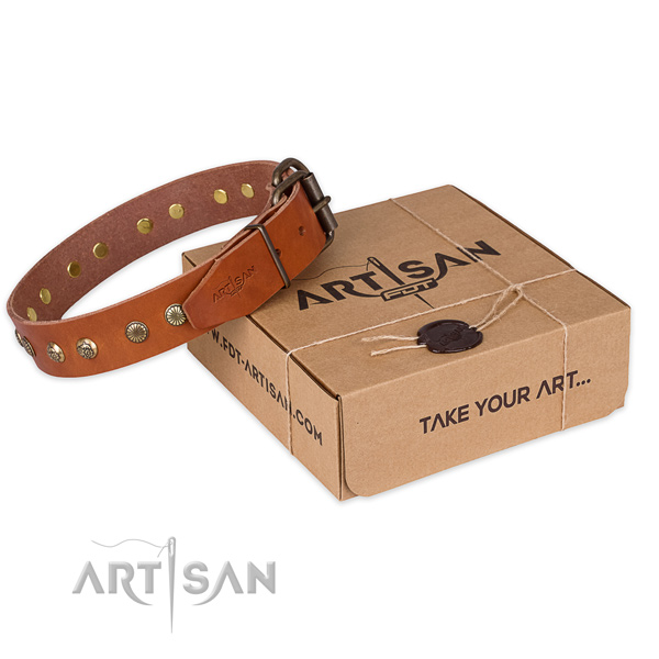 Corrosion proof traditional buckle on leather collar for your lovely pet