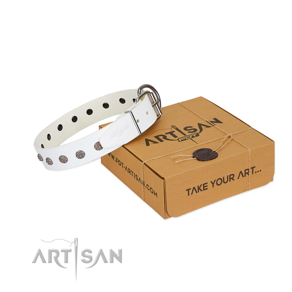 Gentle to touch full grain genuine leather dog collar with decorations for your beautiful doggie