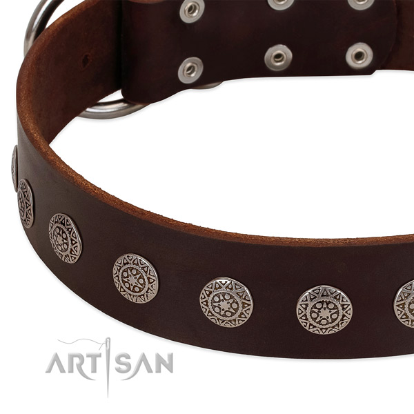 Gentle to touch natural leather collar with embellishments for your four-legged friend