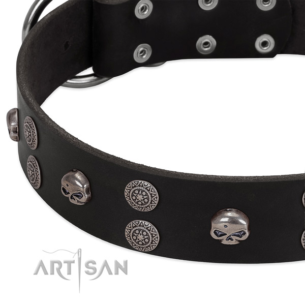 Best quality full grain natural leather dog collar with exquisite embellishments