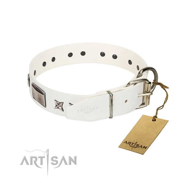 Significant collar of genuine leather for your handsome doggie