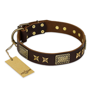"""Sparkling Bronze"" FDT Artisan Genuine Leather English Pointer Collar with Bronze Look Stars and Plates"