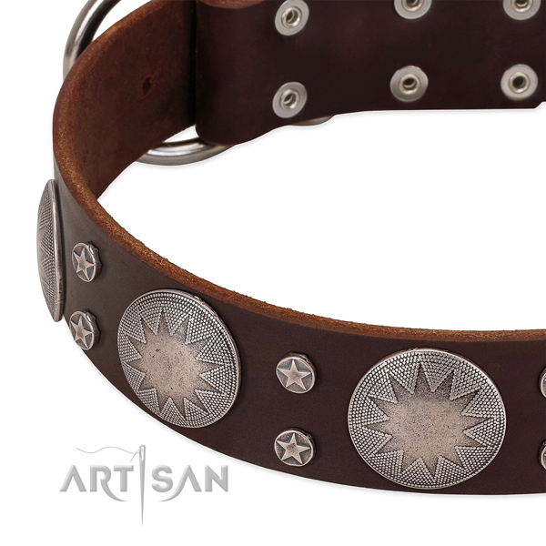 Quality genuine leather dog collar with corrosion proof D-ring