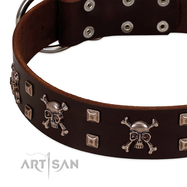 Stunning genuine leather collar for your pet