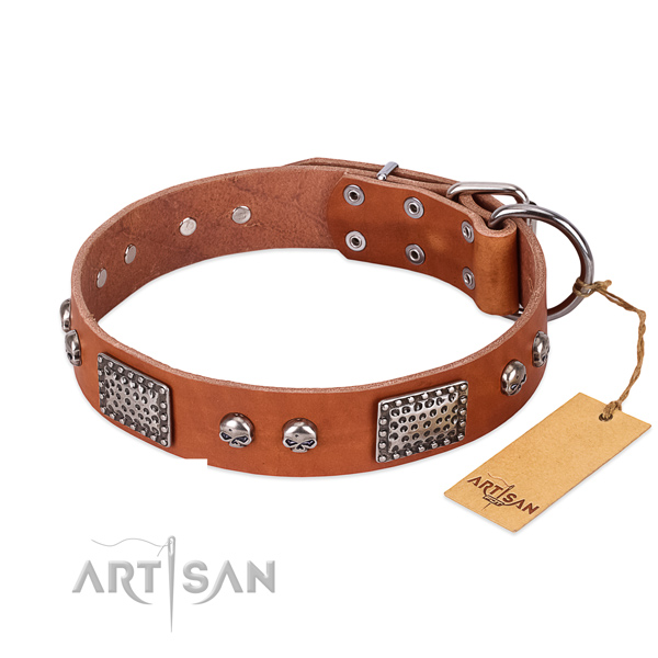 Easy adjustable natural genuine leather dog collar for stylish walking your doggie