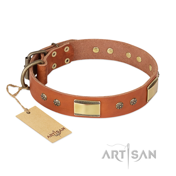 Extraordinary leather collar for your canine