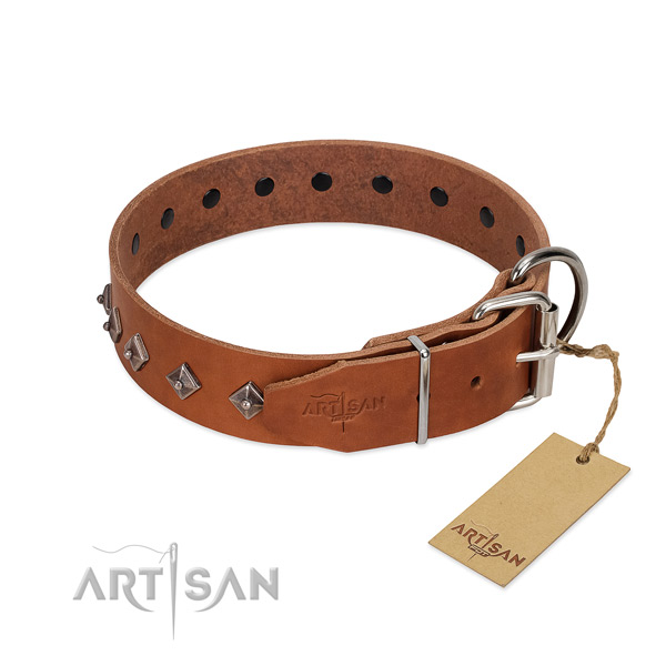 Full grain leather dog collar with impressive embellishments for your pet
