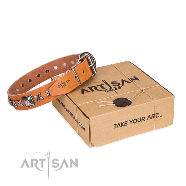 Handy use dog collar of finest quality natural leather with embellishments