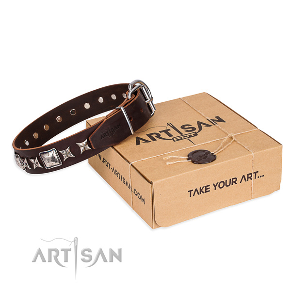 Stylish walking dog collar of best quality full grain leather with adornments