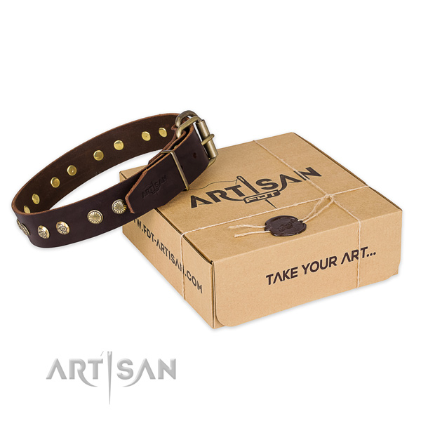 Strong fittings on full grain leather collar for your handsome doggie