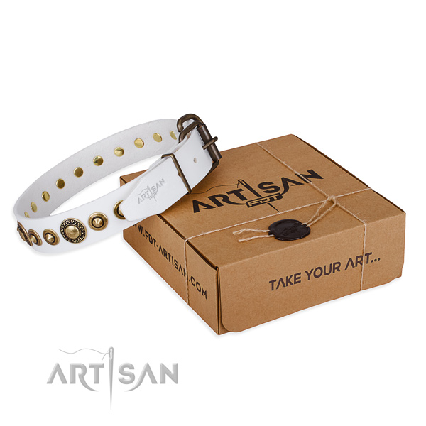 High quality leather dog collar crafted for walking