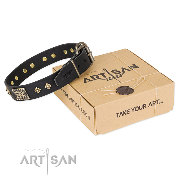 Unique leather collar for your stylish canine