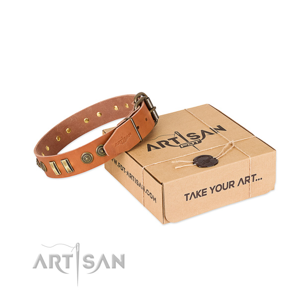 Durable embellishments on natural leather dog collar for your four-legged friend