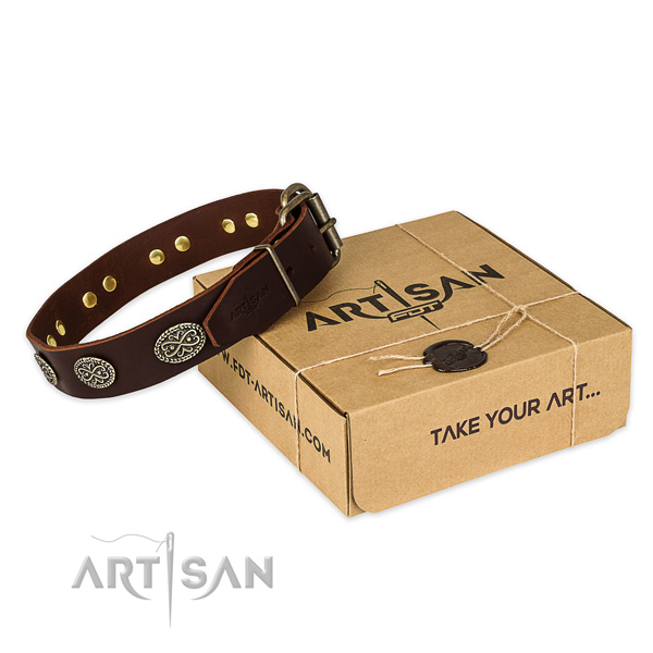Strong D-ring on genuine leather collar for your handsome canine