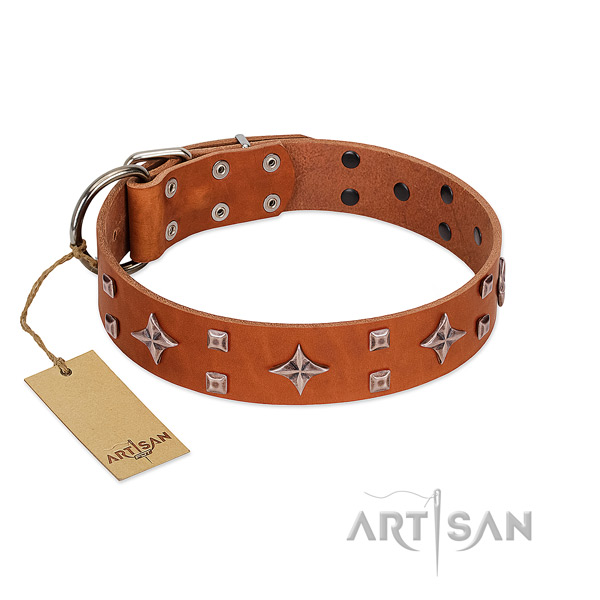 Top notch full grain genuine leather collar for your dog walking in style