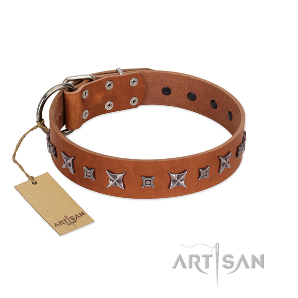 Soft to touch full grain natural leather dog collar with exceptional decorations