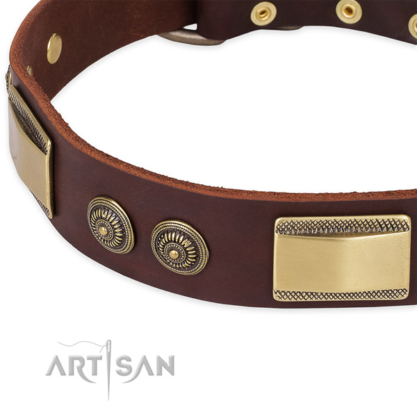 Studded full grain leather collar for your impressive pet