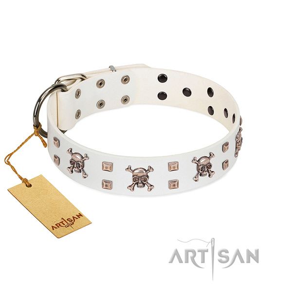 Unusual full grain natural leather collar for your beautiful pet