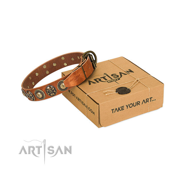 Rust-proof embellishments on dog collar for basic training