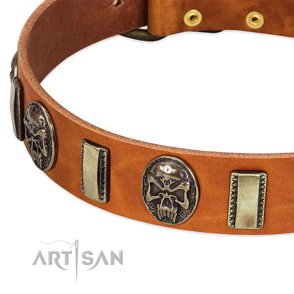 Strong adornments on full grain leather dog collar for your four-legged friend
