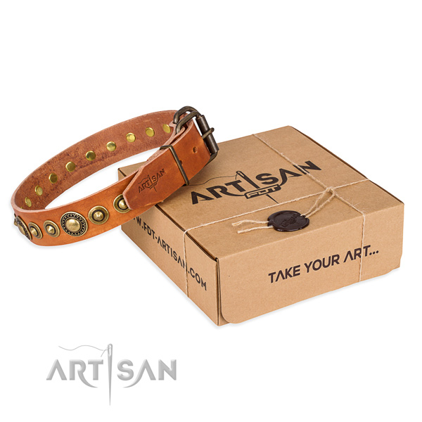Quality genuine leather dog collar handcrafted for basic training