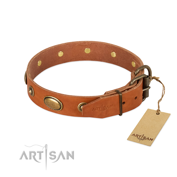 Corrosion proof decorations on full grain leather dog collar for your pet