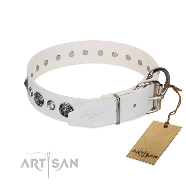 Soft to touch Full grain natural leather dog collar with rust-proof fittings