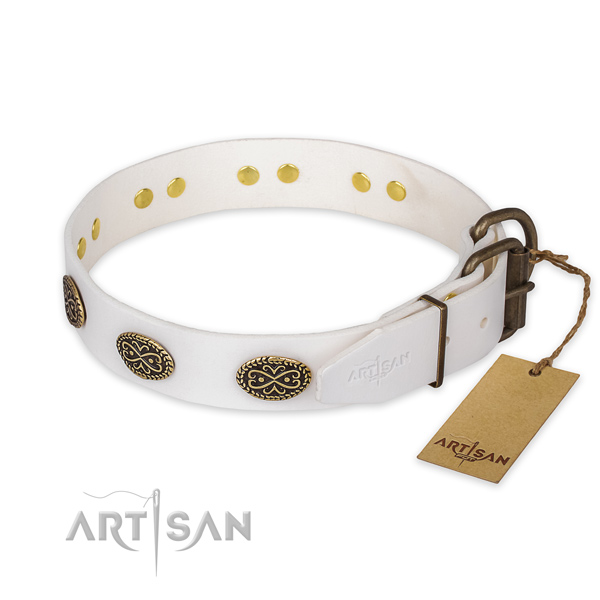 Durable hardware on leather collar for stylish walking your canine