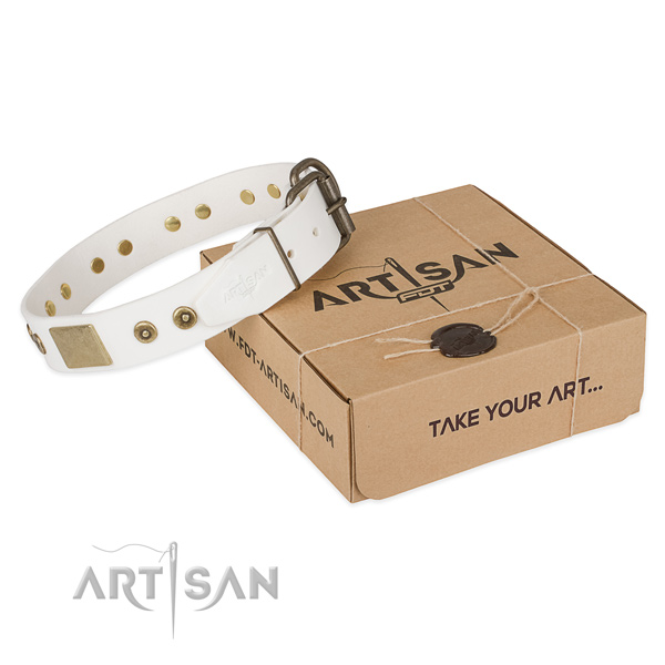Rust resistant buckle on full grain leather dog collar for comfortable wearing