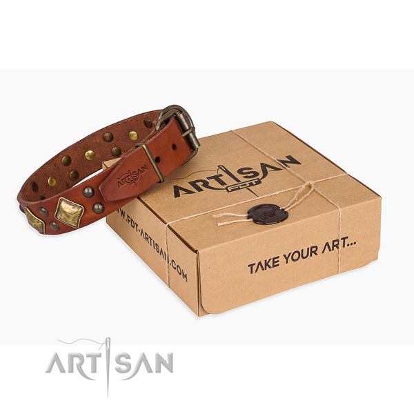 Easy wearing dog collar with Exquisite rust-proof embellishments