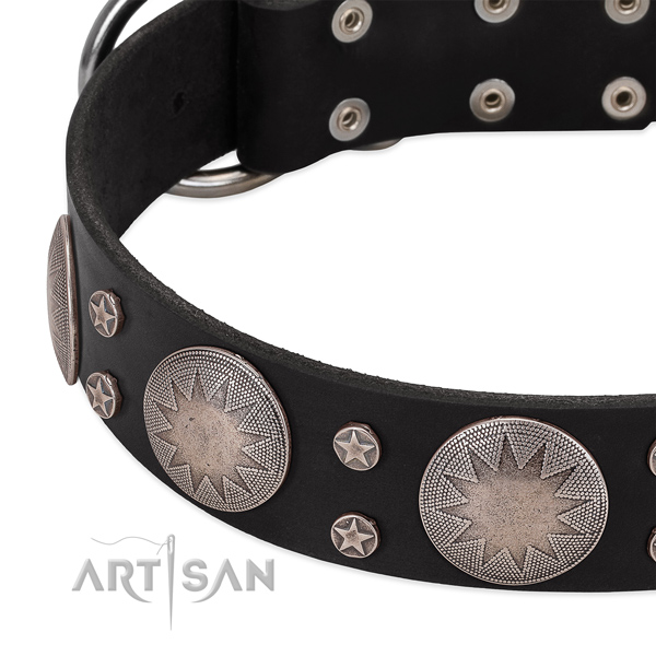 Best quality full grain genuine leather dog collar with studs for your stylish doggie