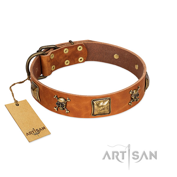 Awesome leather dog collar with corrosion resistant studs