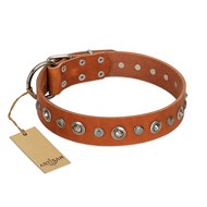 """Gorgeous Roundie"" FDT Artisan Tan Leather English Pointer Collar with Chrome-plated Circles"